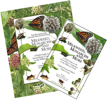 Milkweed Monarchs and More